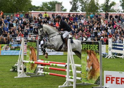 Pferd International 2019_Feigl Christian_Puschak-8039